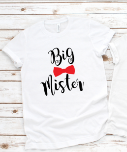 big brother big mister tshirt