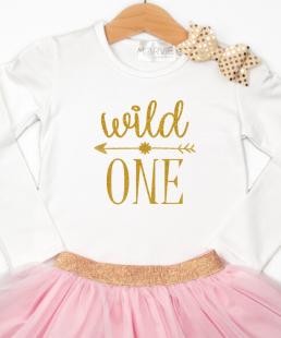 σύνολο για Πρώτα Γενέθλια wild one